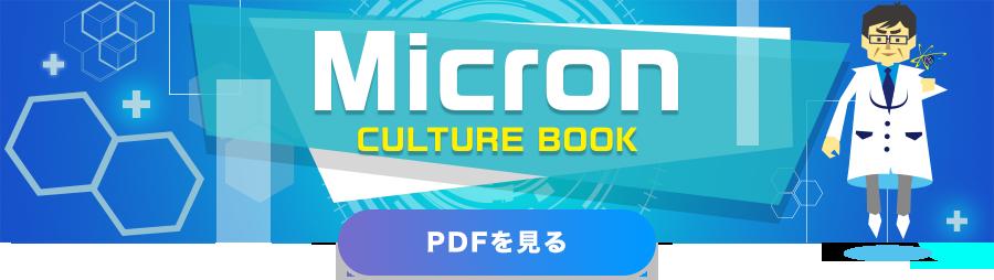 Micron CULTURE BOOK